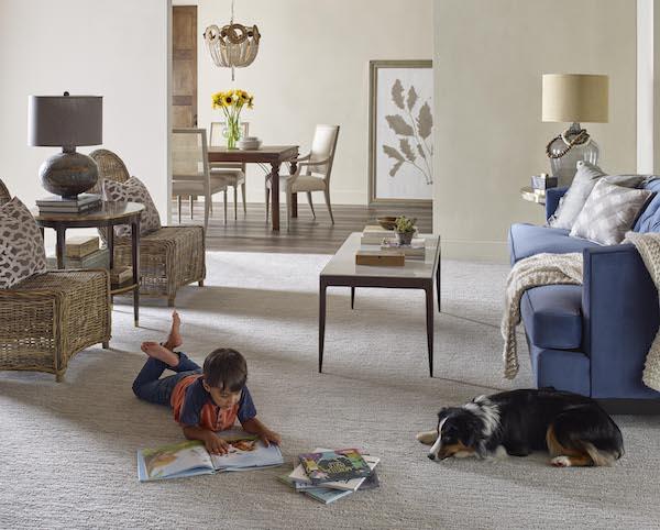 /Uploads/Public/Engineered Floors 270 pets.jpg