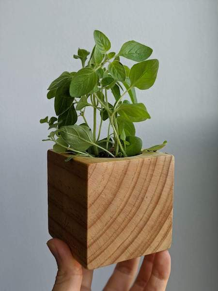 /Uploads/Public/Urban Garden Kits - sprig box.jpg